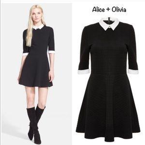 Alice & Olivia collared combo textured dress 2